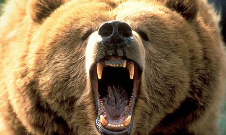 The I Fund is a special bargain-angry-bear-jpg