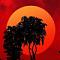 redbrian